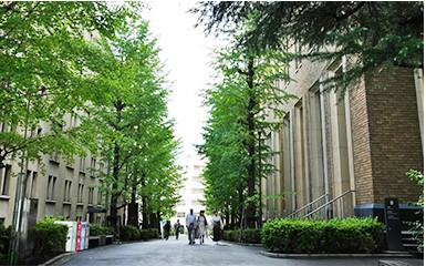 青山学院大学(Aoyama Gakuin University)